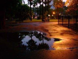 El parque al atardecer Foto: Alberto Martínez