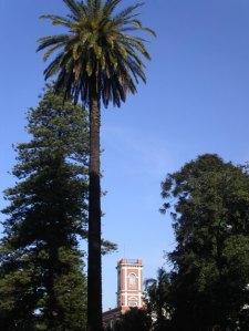 La torre del Museo Histórico Nacional en el Parque Lezama